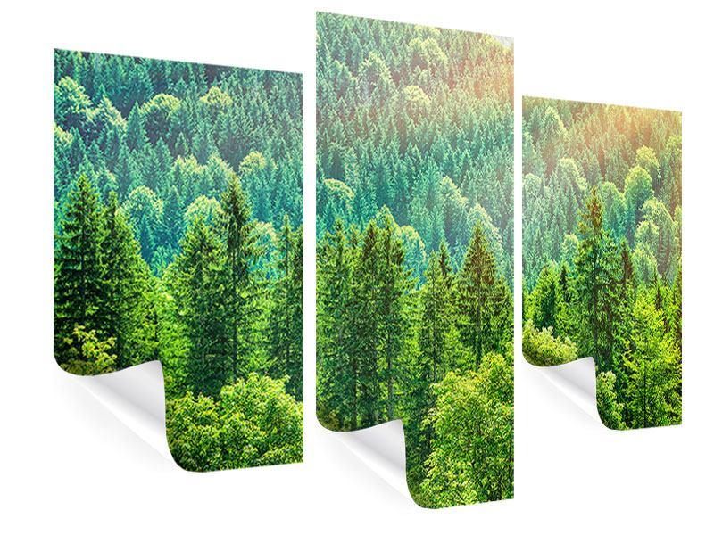 Poster 3-teilig modern Der Waldhügel