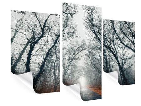 Poster 3-teilig modern Mysteriöse Stimmung im Wald