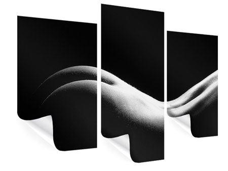 Poster 3-teilig modern Nude
