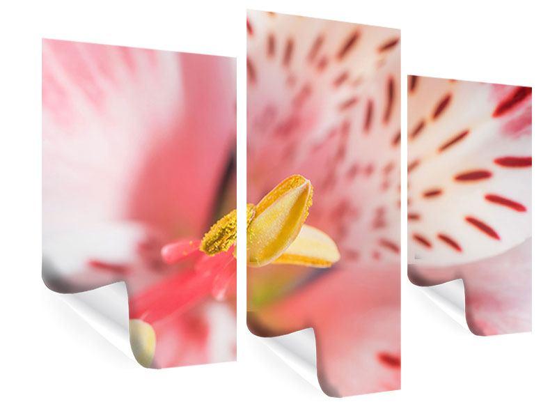 Poster 3-teilig modern Der Lilienstempel