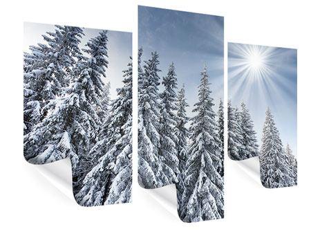 Poster 3-teilig modern Wintertannen