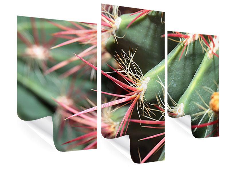Poster 3-teilig modern Die Kaktusblüte