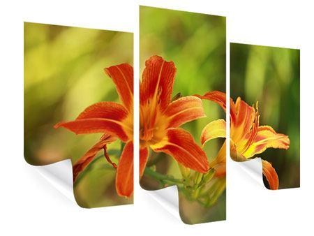 Poster 3-teilig modern Natural Lilien