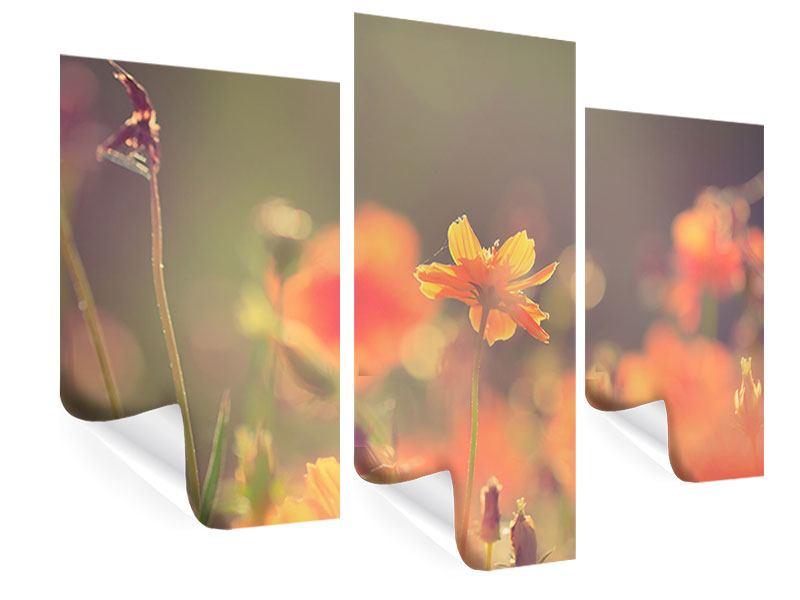 Poster 3-teilig modern Blütenpracht