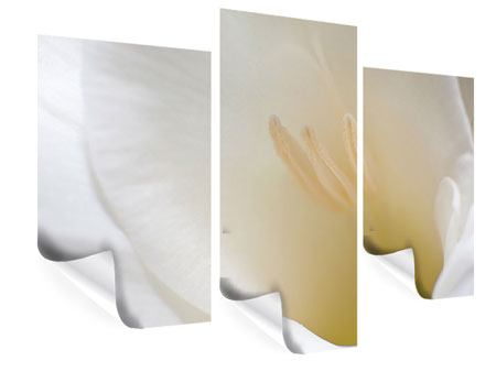 Poster 3-teilig modern In einer Blüte