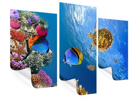 Poster 3-teilig modern Fisch im Wasser