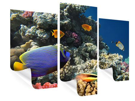 Poster 3-teilig modern Das Aquarium