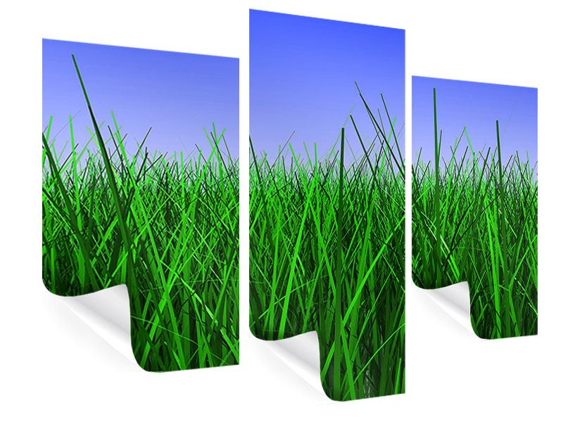 Poster 3-teilig modern Im Gras