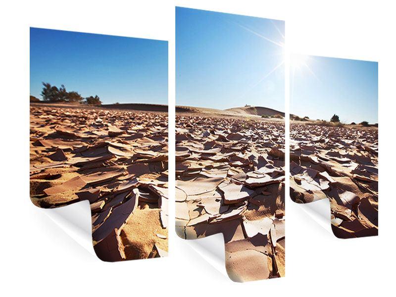 Poster 3-teilig modern Dürre