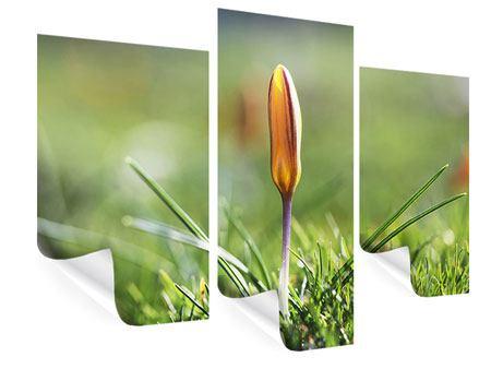 Poster 3-teilig modern Die Blütenknospe