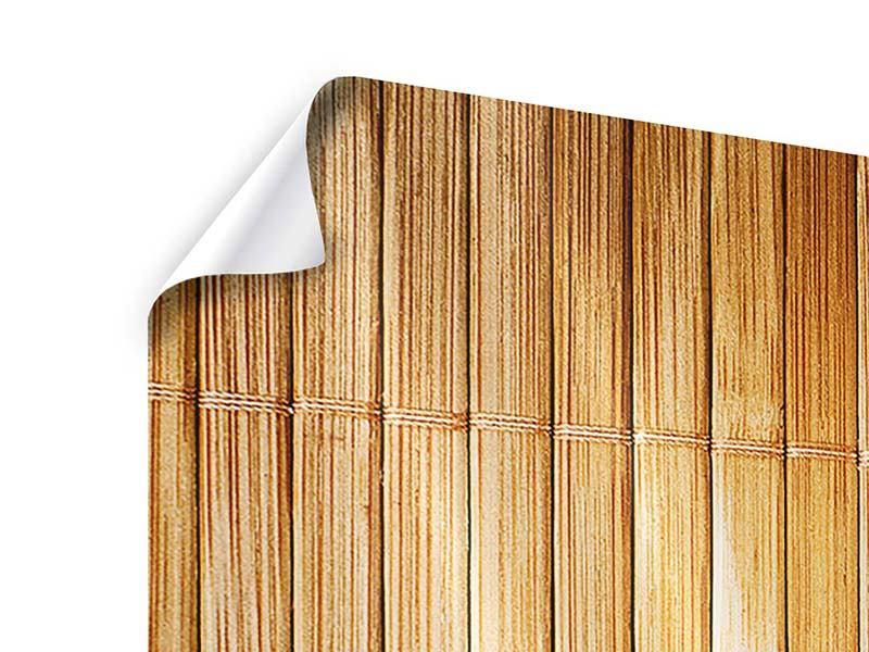 Poster 3-teilig modern Bambusrohre