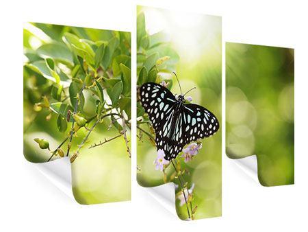 Poster 3-teilig modern Papilio Schmetterling XXL