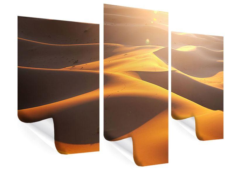 Poster 3-teilig modern Wüstenwanderung