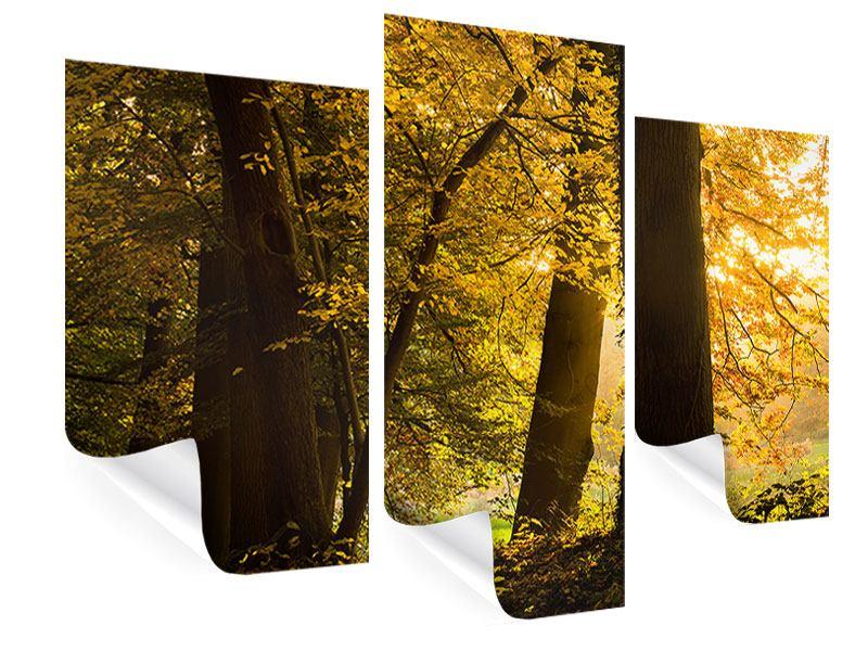 Poster 3-teilig modern Herbstlaub