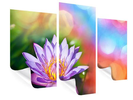 Poster 3-teilig modern Colored Lotus