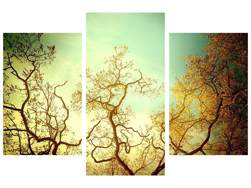 Poster 3-teilig modern Bäume im Herbst