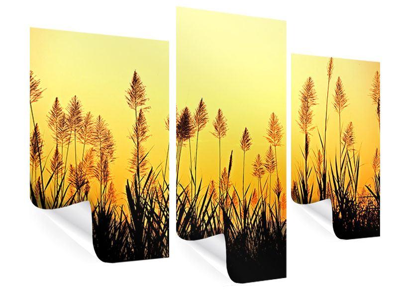 Poster 3-teilig modern Die Blumen des Feldes
