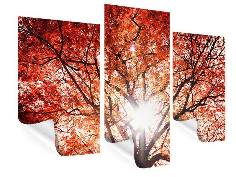 Poster 3-teilig modern Herbstlicht
