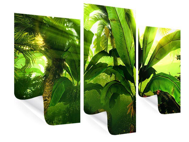 Poster 3-teilig modern Sonnenaufgang im Regenwald