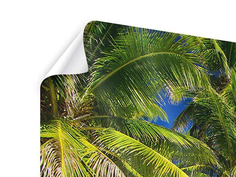 Poster 3-teilig modern Die einsame Insel