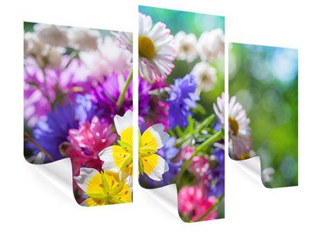 Poster 3-teilig modern XXL Gartenblumen