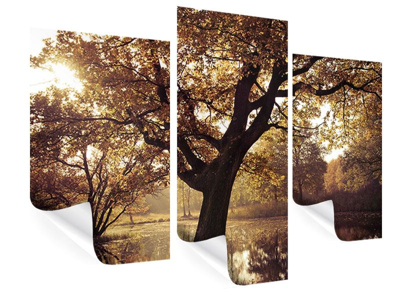 Poster 3-teilig modern Landschaftspark