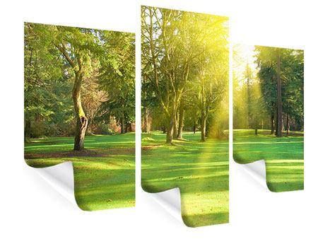 Poster 3-teilig modern Im Park
