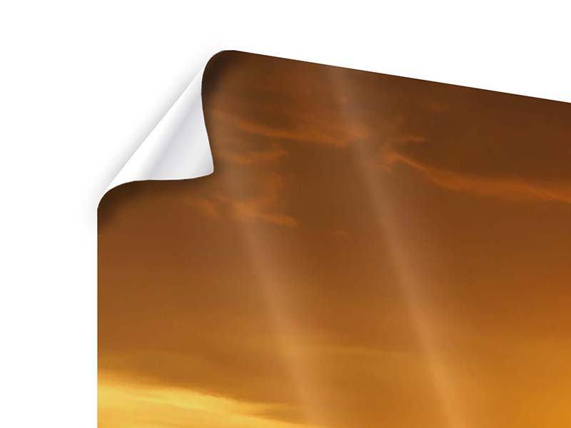 Poster 3-teilig modern Glühender Sonnenuntergang am Wasser