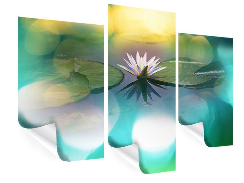 Poster 3-teilig modern Lotus-Spiegelung
