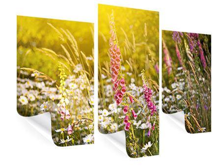 Poster 3-teilig modern Sommerliche Blumenwiese