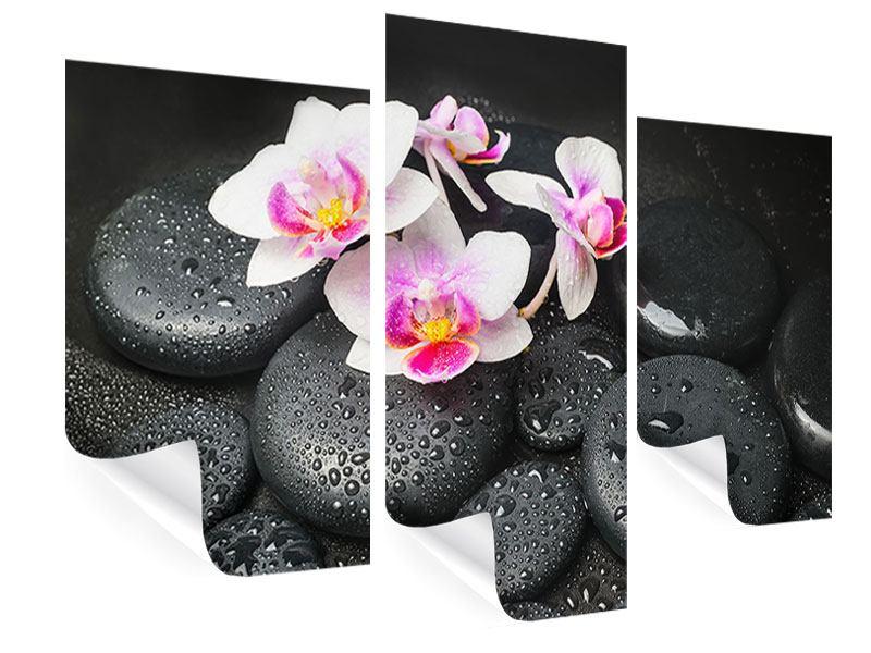 Poster 3-teilig modern Feng-Shui-Orchidee Zen