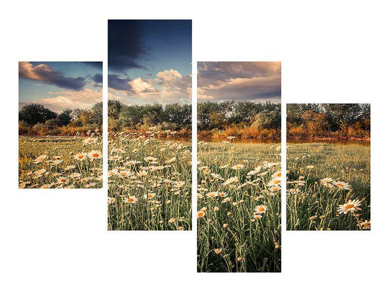 Poster 4-teilig modern Die Wiesenmargerite am Fluss