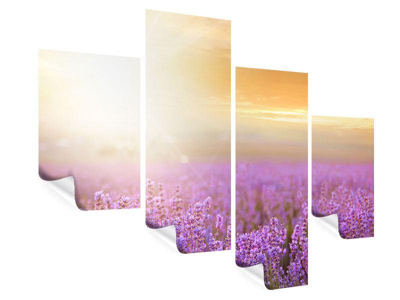 Poster 4-teilig modern Sonnenuntergang beim Lavendelfeld