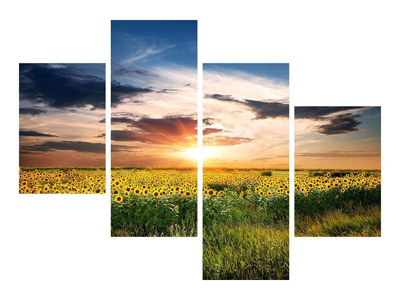 Poster 4-teilig modern Ein Feld von Sonnenblumen