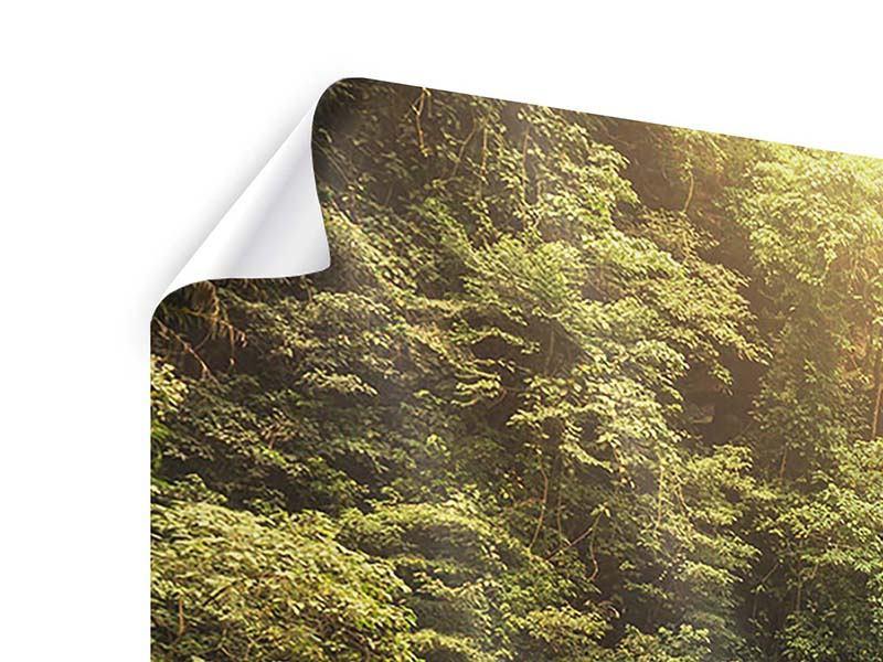 Poster 4-teilig modern Wasserfall Bali