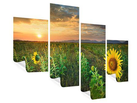 Poster 4-teilig modern Sonnenblumenfeld im Abendrot