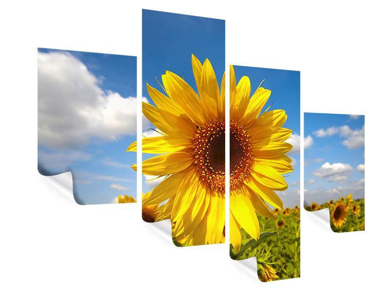Poster 4-teilig modern Das Feld der Sonnenblumen