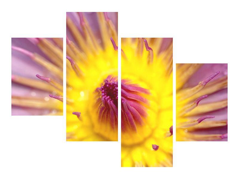 Poster 4-teilig modern XXL-Lotus