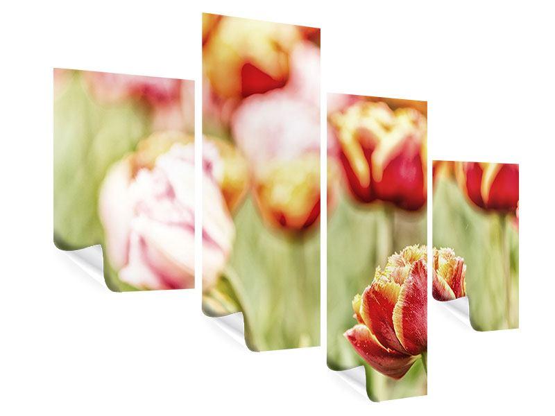 Poster 4-teilig modern Die Schönheit der Tulpe