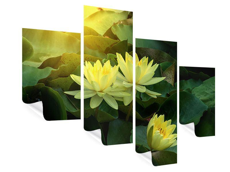 Poster 4-teilig modern Wilde Lotus