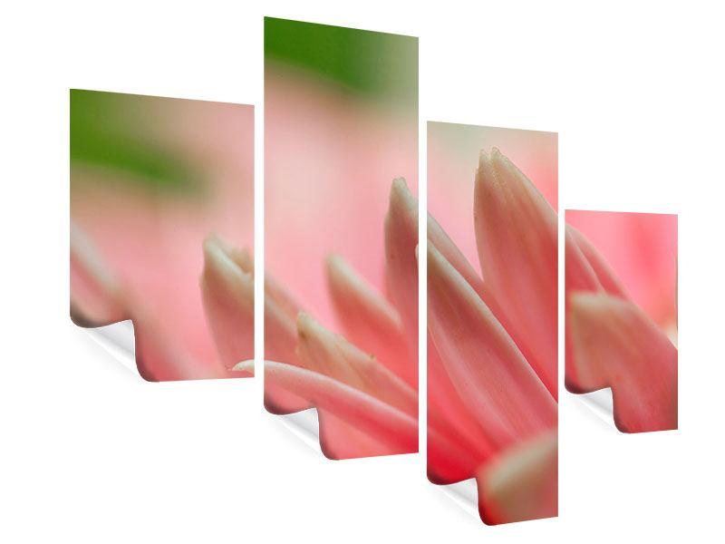 Poster 4-teilig modern Close Up einer Blüte