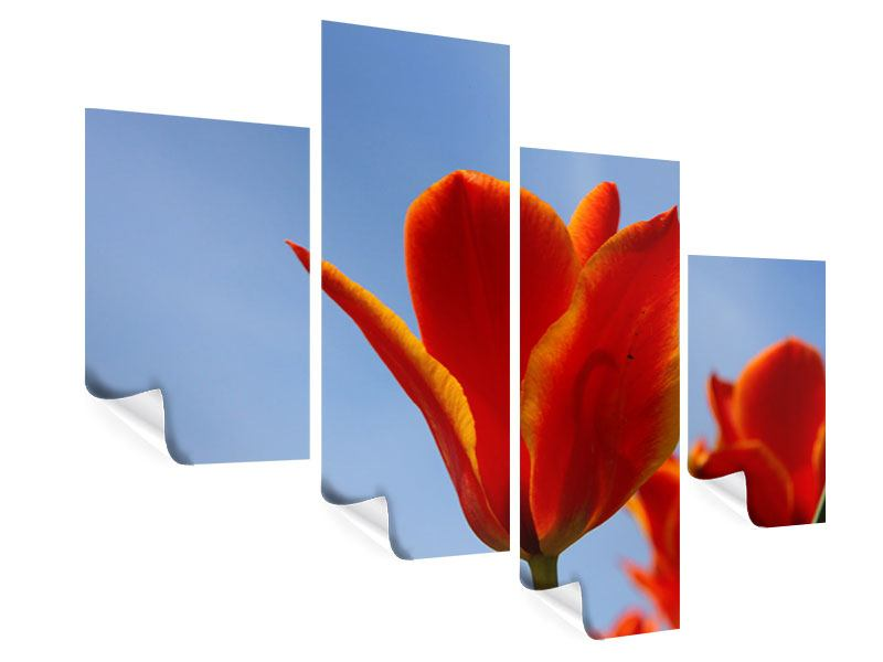 Poster 4-teilig modern Rote Tulpen in XXL