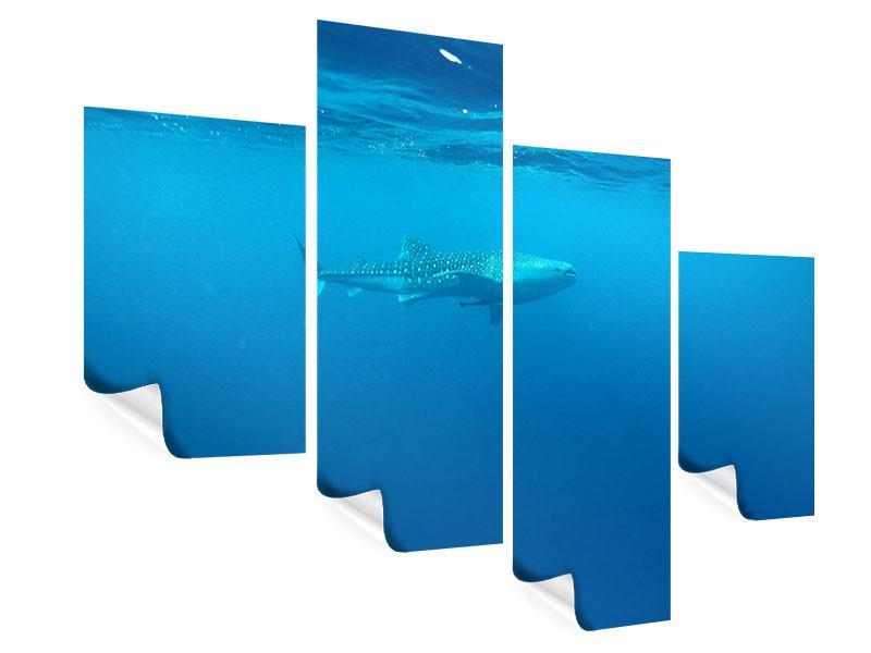 Poster 4-teilig modern Der Walhai