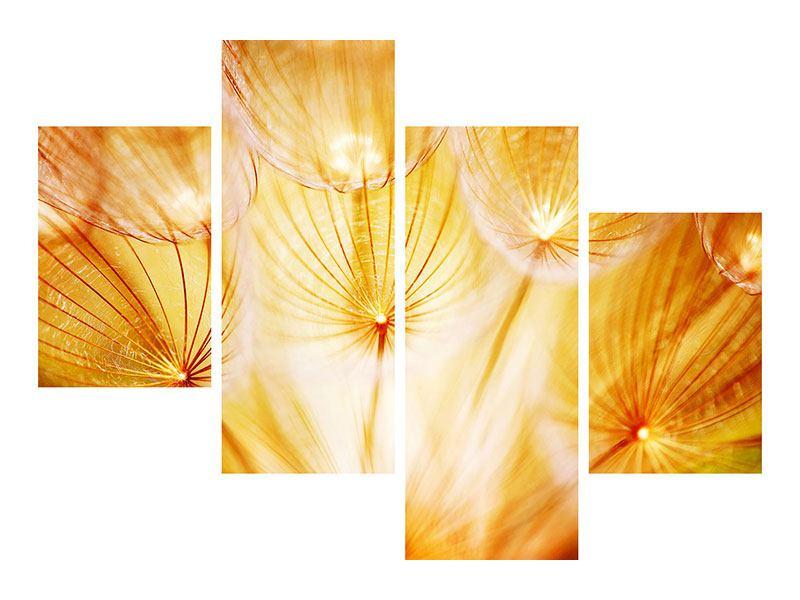 Poster 4-teilig modern Close Up Pusteblume im Licht
