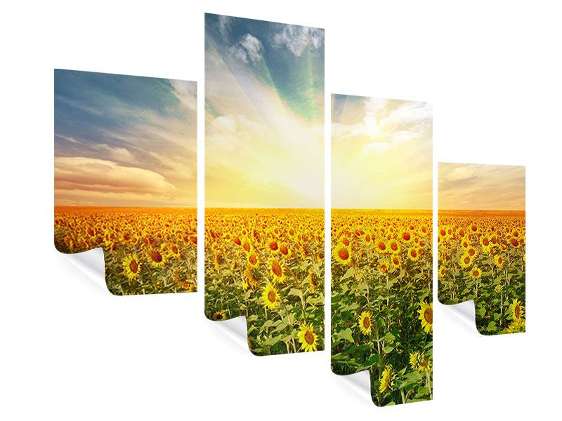 Poster 4-teilig modern Ein Feld voller Sonnenblumen