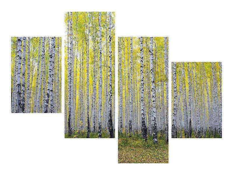 Poster 4-teilig modern Herbstlicher Birkenwald