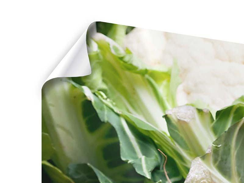 Poster 4-teilig modern Gemüse