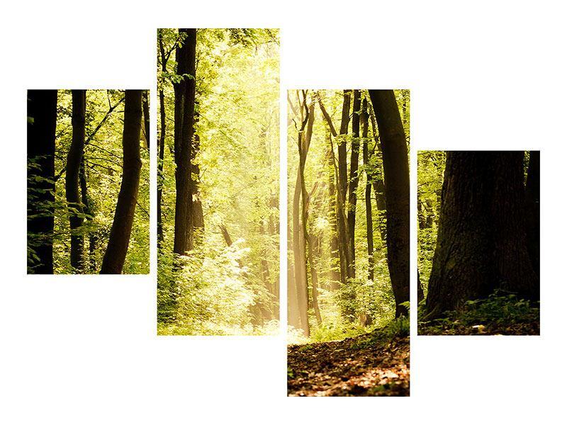 Poster 4-teilig modern Sonnenaufgang im Wald