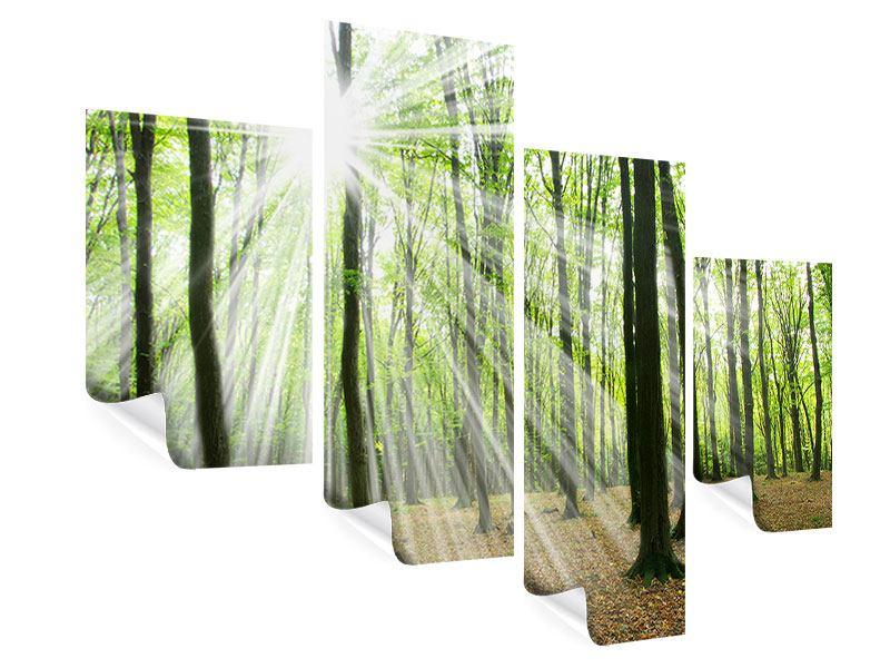 Poster 4-teilig modern Magisches Licht in den Bäumen