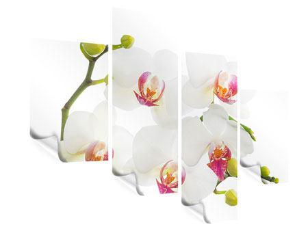 Poster 4-teilig modern Orchideenliebe